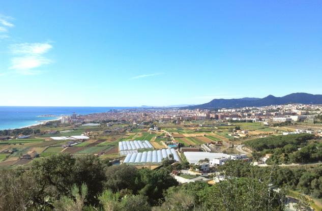 La zona agrícola de les Cinc Sènies i la ciutat de Mataró al fons. | Foto: JORDI BENÍTEZ
