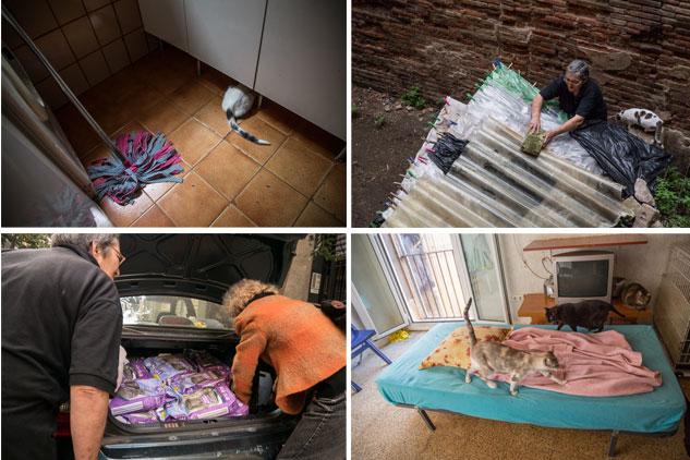 Marga y Áurea se enfrentan a mucho trabajo diario para la manutención de los gatos acogidos | Fotos: FERNEY ALONSO