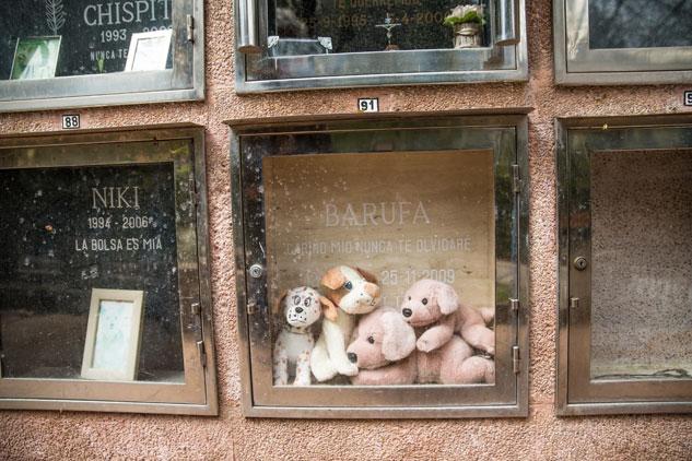Cementerio de animales en XXX | Foto: FERNEY ALONSO